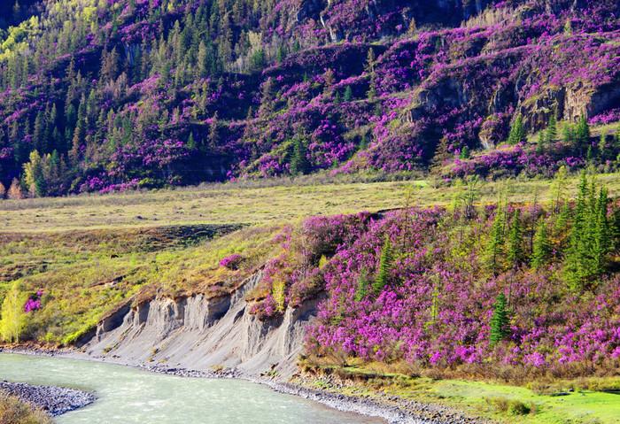 Майские праздники в Горном Алтае