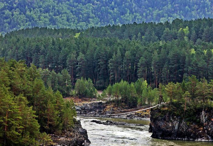 Алтайские легенды: Катунский мост