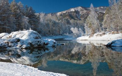 Чемал зимой